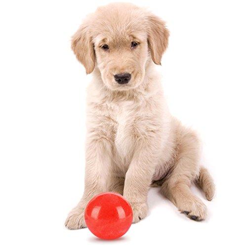 aodoor-balle-jouets-en-caoutchouc-pour-chiens-balle-extreme-jouets-jouet-chien-boomer-ball-diametre-
