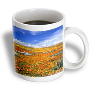 Danita Delimont - Flowers - Wildflowers, California Poppy Reserve, California, Usa - Us05 Jal0171 - John Alves - 15Oz Mug (Mug_142733_2)