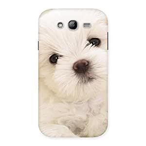 Special Cute Pup White Back Case Cover for Galaxy Grand Neo