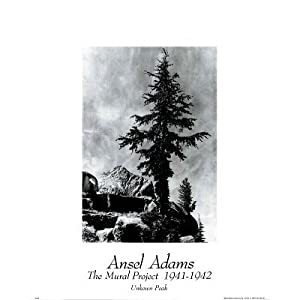Posters prints for Ansel adams the mural project posters