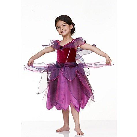 Vidia Fairy Costume