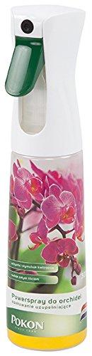 scotts-hydratant-orchidee-orchyd2-blanc-6-x-8-x-24-cm-orchyd2