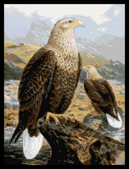 Counted Cross Stitch Pattern Eagle Nascar Racing Flames PDF