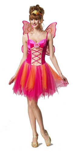 HGM Costume Women's Dream Fairy Costume - Small