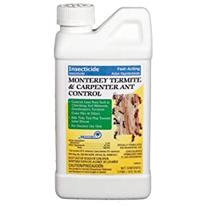 Termite and Carpenter Ant Control Size: 1 Pint