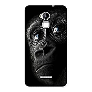 Gorgeous King Kong Blue Eyes Back Case Cover for Coolpad Note 3