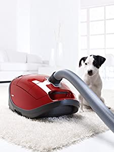Good Hoovers For Dog Hair