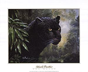 Amazon.com : Black Panther by Don Balke 20x16 Laminated ...