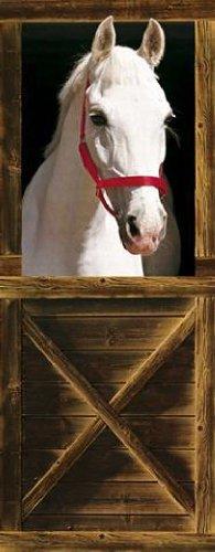 40520 Pferde - Sebastian Fototapete Poster-Tapete (200 x 86 cm)
