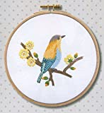 Tropical Yellow Bird with Frame Embroidery Kit