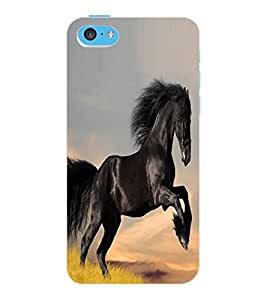 ColourCraft Lovely Horse Design Back Case Cover for APPLE IPHONE 5C