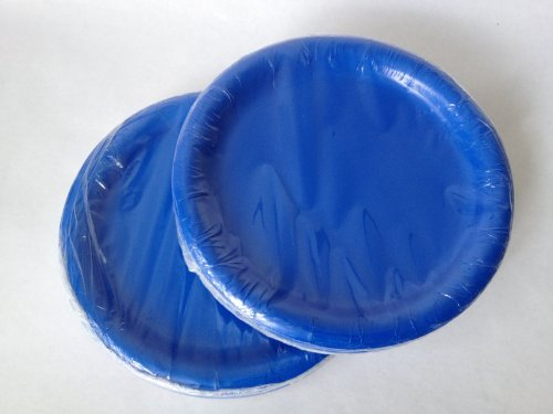 Blue Paper Party Plates 7 in - (48) Plates!