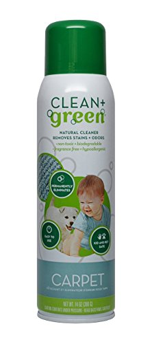 clean-green-carpet-cleaner-natural-stain-and-odor-remover-deep-clean-your-carpeted-floors-with-this-