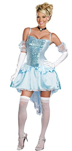 Ace Halloween Adult Women's Sexy Cinderella Princess Costumes