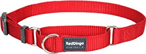 Red Dingo Classic Martingale Dog Collar, Medium, Red