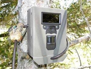 Security Box Fits Bushnell Trophy Cam Black LED Trail Cameras