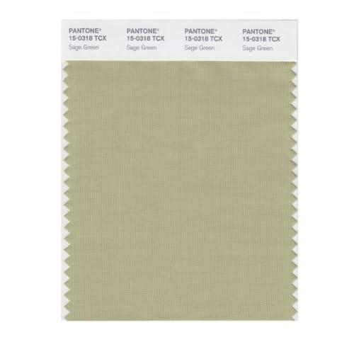 Pantone smart 15 0318x color swatch card sage green Sage green pantone