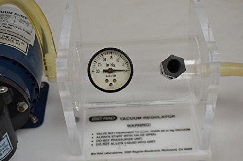 Buy Bio Rad Laboratories Now!