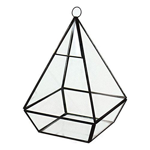 CYS® Hanging Modern Geometric Glass Terrarium / Tabletop Candle Holder, Planter, Tealight Display (Pyramid Glass Display Case compare prices)