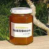 【和歌山 特産】 梅のヤマイチ本店の女将手作り「梅ジャム」※和歌山県産 特定農家 南高梅のみ使用