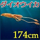 ぬいぐるみ ダイオウイカ 174cm