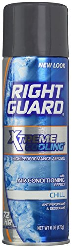 Right Guard Xtreme Cooling Chill Antiperspirant and Deodorant Spray for Men, 6 Ounce (Right Guard Spray compare prices)