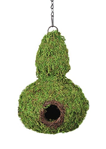 SuperMoss 56011 Gourd Birdhouse with Chain, 7.5 by 12-Inch, Fresh Green