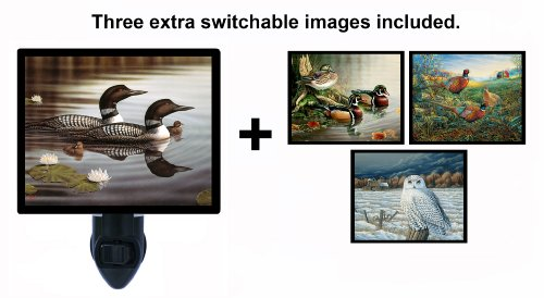 Night Light W/ Switchable Inserts - Loons & Wildlife front-1031362