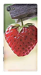 WOW Printed Designer Mobile Case Back Cover For Sony Xperia Z5 Compact