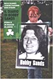 img - for Il diario di Bobby Sands. Storia di un ragazzo irlandese book / textbook / text book