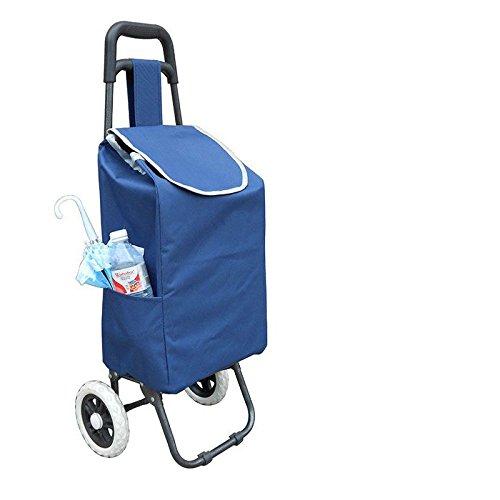 dans-la-vieille-annee-portable-pliable-panier-acheter-un-vehicule-leger-voiture-chariot-petit-panier