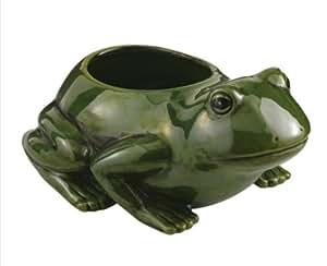 amazoncom ceramic frog planter patio lawn amp garden