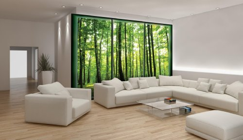 fototapete fototapeten tapete tapeten birken wald baum natur 495 p8. Black Bedroom Furniture Sets. Home Design Ideas