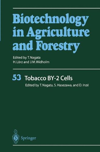 Tobacco By-2 Cells (Biotechnology In Agriculture And Forestry)