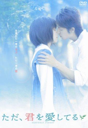 ただ、君を愛してる スタンダード・エディション [DVD] / 宮﨑 あおい
