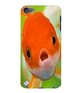 ColourCraft Cute Fish Design Back Case Cover for APPLE IPOD TOUCH 5
