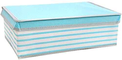 Nonwovens boîte de rangement boîte à gants Box In Box-princess bande bleue