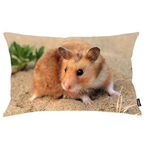 i FaMuRay Lovely Hamster Copricuscino Federa King Size 20''X36''