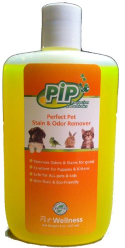 Pip Perfect Pet Stain & Odor Remover Concentrate - 8 Oz. Bottle | Removes Odors & Stains For Good! | Safe For All Pets & Kids | Non-Toxic