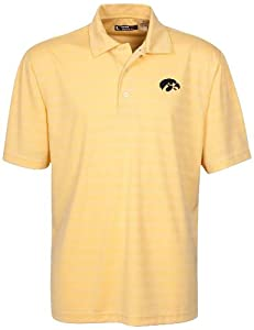 NCAA Iowa Hawkeyes Mens Textured Stripe Golf Polo by Oxford
