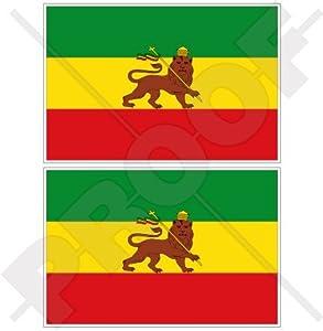 Amazon.com: ETHIOPIA Former Ethiopian Lion of Judah Flag