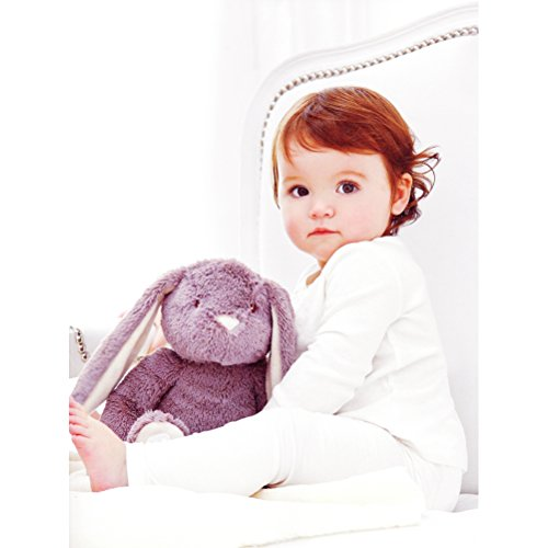 Ultra Soft Bedtime Plush Stuffed Bunny with Stroller Blanket