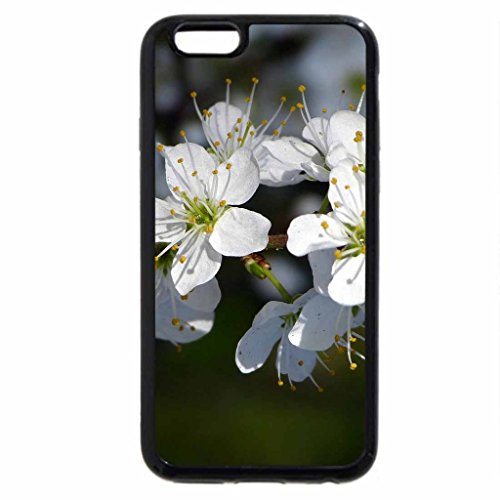iphone-6s-iphone-6-motivo-fioritura-colore-rametto-di-alberi