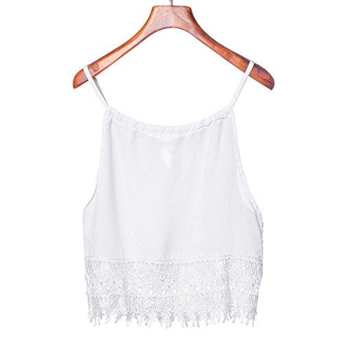 Amlaiworld Gilet donna,Pizzo Top manica corta BlouseTank cime Tee t-shirt (L)