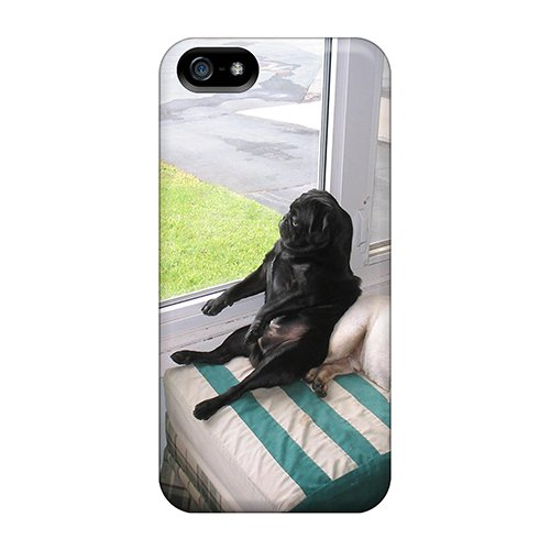 Hot Design Premium Bfx7920Qnwe Tpu Case Cover Iphone 5/5S Protection Case(Our Pug Kirby Using Max As A Prop)