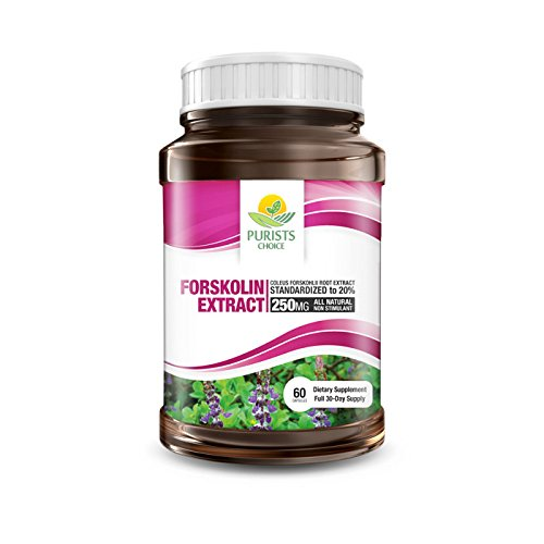 Pure Forskolin Extract by Purists Choice |100% Pure Coleus Forskohlii Root Extract with 20% Forskolin 1 bottle