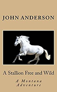 A Stallion Free And Wild by John Anderson ebook deal