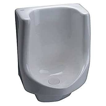 Zurn Z5795 Large Waterless Urinal