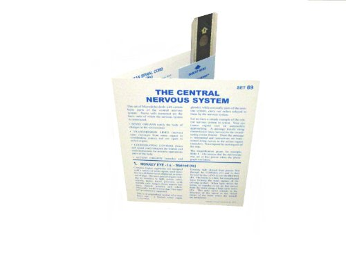 American Educational Microslide Central Nervous System Lesson Plan Set (Box Of 30)