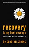 Recovery is my best revenge: My experience of trauma, abuse and dissociative identity disorder (Collected Essays Book 1)